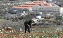 إرجاء نشر تقرير أممي حول الشركات الإسرائيلية الداعمة للاستيطان