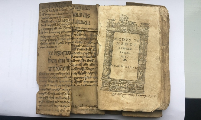 اكتشاف مخطوط نادر من كتاب لابن سينا باللغة الإيرلندية
