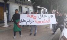 #نبض_الشبكة: شعارات ساخرة ضد #العهدة_الخامسة بالجزائر
