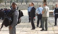 """اتساع شعبية فايغلين: """"أرض إسرائيل الكبرى"""" وشرعنة الماريحوانا"""