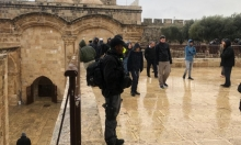 القدس المحتلة: اقتحامات متكررة للمستوطنين في المسجد الأقصى