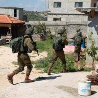 اعتقال 15 فلسطينيا والاحتلال يواصل مطاردة منفذ عملية سلفيت