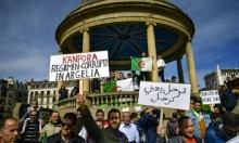 مسؤول جزائري: بوتفليقة يوافق على تسليم السلطة لرئيس منتخب