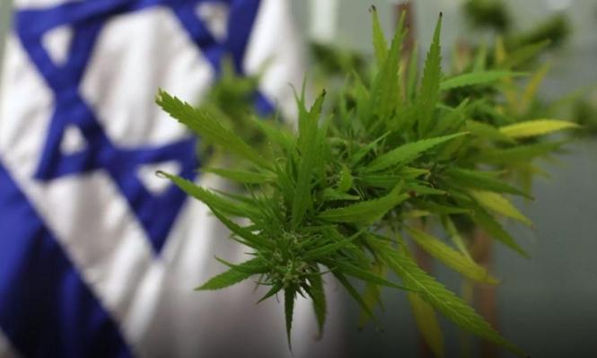 القنب الإسرائيلي: مكاسب اقتصادية وانتخابية