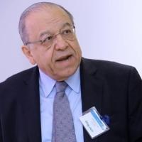 روحانا: شعور الخيبة والخذلان من الأحزاب العربية لا يواجه بالعقاب