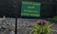 نبش ضريح في مقبرة قرية اللجون المهجرة
