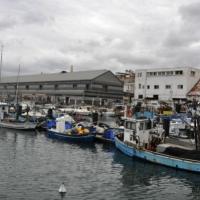 ميناء يافا: تهجير للصيادين العرب وجذب للمستثمرين اليهود