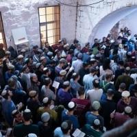 مواجهات واعتقالات وآلاف المستوطنين يقتحمون مواقع أثرية بالضفة