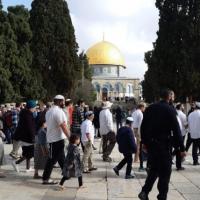 مئات المستوطنين يقتحمون الأقصى وتقييدات على الفلسطينيين