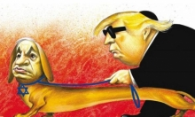 "نتنياهو في ""نيويورك تايمز"": كلبٌ يقود ترامب"