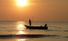 بريطانيا: كوكايين ومواد سامة في أسماك الأنهر