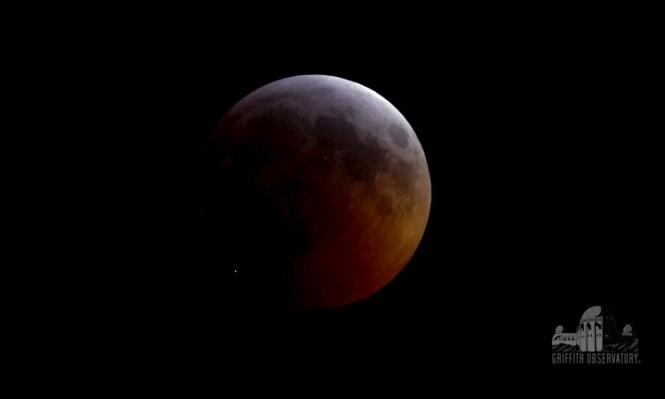"""نيزك يضرب القمر بقوة تعادل 1.5 طنا من مادة الـ""""تي إن تي"""""""