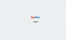 مصر: حجب مواقع الأفلام غير القانونية يثير جدلا