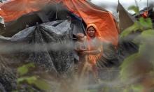 لاجئو الروهينغا يحصلون على بطاقات هوية من بنغلادش