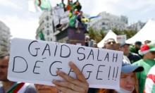 """الجزائر: دعوات للجيش إلى إجراء """"حوار صريح"""" مع المحتجين"""