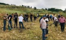 في ذكرى النكبة:معسكر عمل في مقبرة الريحانية المهجرة