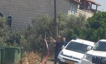 إصابة شخص في جريمة إطلاق نار بالرينة