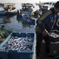 بعد الأنباء عن التفاهمات: توسيع مساحة الصيد ببحر غزة