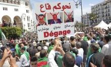 """""""المنجل"""": هل """"تحصد"""" الجزائر رموز الفساد بعد بوتفليقة؟"""