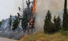 حريق في أحراش قرب طمرة وإكسال