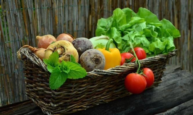 دراسة: الأطعمة الغنية بالألياف تُساعد مرضى قصور القلب
