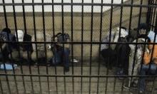 مصر: حكم نهائي بإعدام 17 شخصا أُدينوا باستهداف كنائس