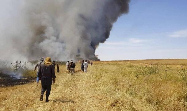 آلاف الدونمات المحترقة في العراق وسورية.. من المتهم؟