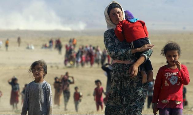 العراق: بدء التعرف على جثث 141 أيزيديًا