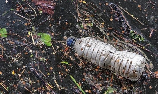 كندا تعتزم حظر المواد البلاستيكية المُستخدمة لمرة واحدة