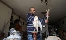 شاب غزيّ يربّي حديقة حيوان للعلاج والتثقيف