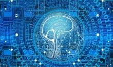 دراسة: استخدام الإنترنت المفرط يغيّر بنية الدّماغ