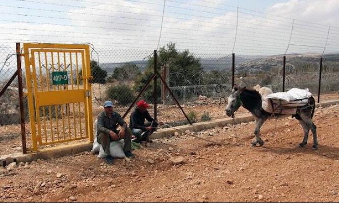 بسبب الاحتلال والاستيطان: تصحّر أكثر من 50% من أراضي الضفة