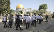 139 مستوطنا يقتحمون الأقصى وتقييدات على دخول الفلسطينيين للمسجد