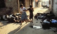 """""""بنت من شاتيلا"""": نحو مقولة فلسطينيّة عليا في موقعيّة الضحيّة"""