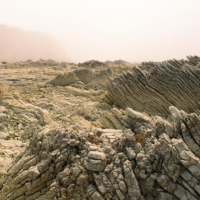 هزة أرضية تضرب منطقة البحر الميت