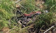مصرع سائق دراجة نارية في حادث طرق قرب الجش
