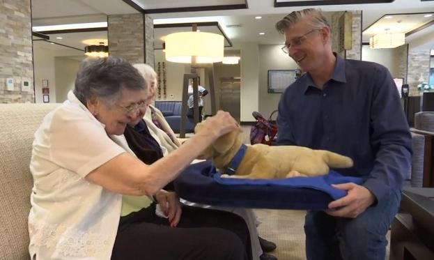 كلب آلي في طريقه ليكون أفضل صديق للمصابين بالخرف