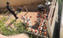 أم الفحم: اعتقال شاب ومصادرة 48 أسطوانة غاز