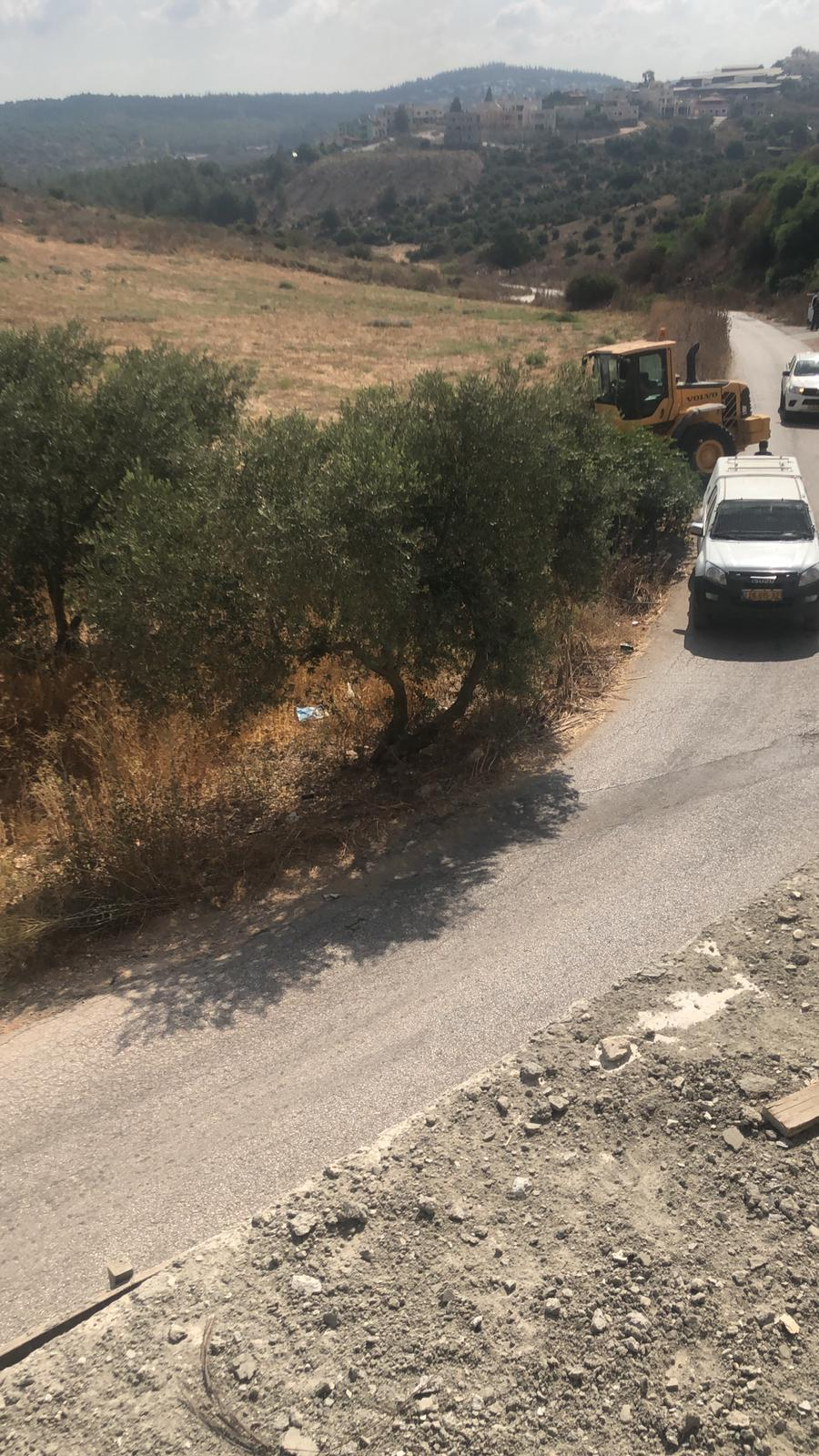 غضب في الزرازير: السلطات تقتلع أشجار زيتون