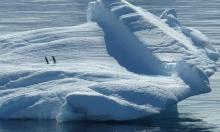 الجليد الصناعي للحد من ذوبان القطب الجنوبي!