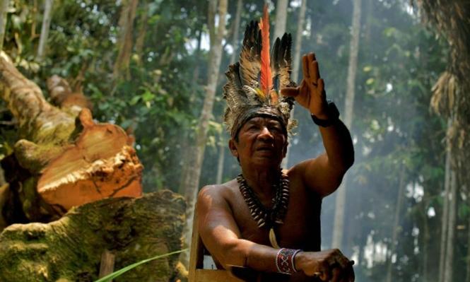 البرازيل: منقبون عن الذهب يجتاحون قرية أصلانية ويطردون سكانها
