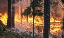 روسيا: حرائق سيبيريا تعادل مساحة بلجيكيا والجيش يتحرك للإخماد