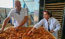 تصنيع وبيع دقيق الخضار والفاكهة بتركيا (1)