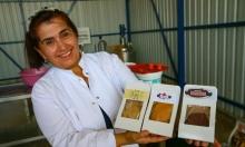 تصنيع وبيع دقيق الخضار والفاكهة بتركيا (2)