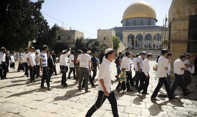 مستوطنا يقتحمون المسجد الأقصى.. و2500 مستوطنا يقتحمون المسجد الأقصى.. و2500