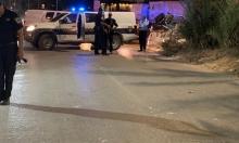 إصابة 5 أشخاص دهسًا في الطيرة ويركا