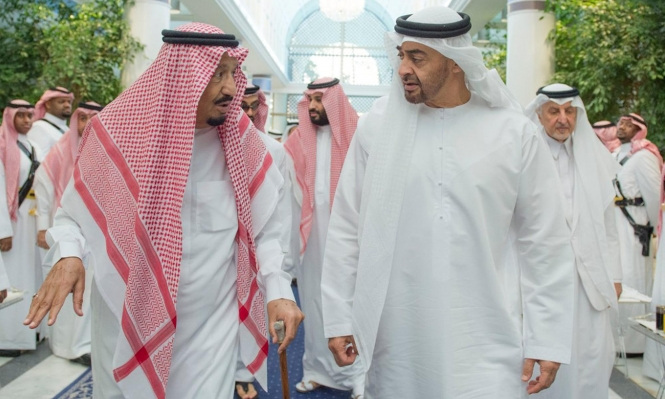 بن زايد وسلمان يلتقيان بعد سقوط عدن بأيدي الانفصاليين