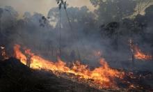قمة إقليمية طارئة بشأن حرائق الأمازون