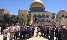 113 مستوطنا يقتحمون الأقصى وإبعاد لفلسطينيين عن ساحاته