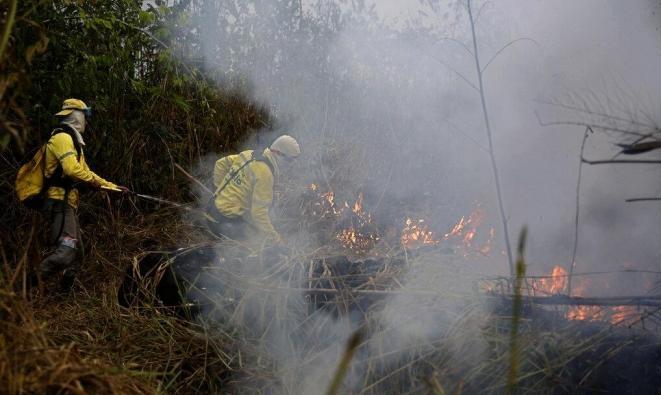 """""""التدخل البشري والاحتباس الحراري"""" هما السبب بحرائق غابات الأمازون"""